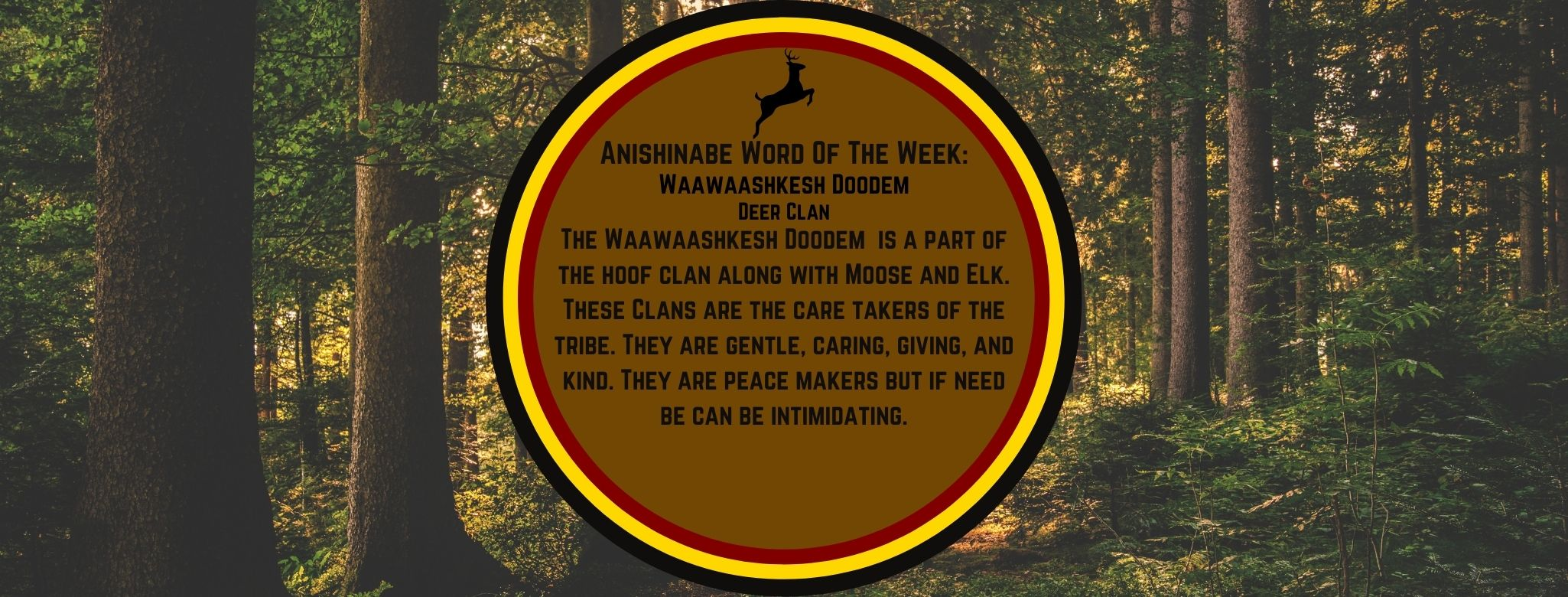 Anishinabe Word of the Week Waawaashkesh Dodem